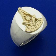 Past Master ring in two colors of 10k gold